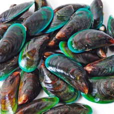 Seafood: New Zealand Green Lipped Mussels
